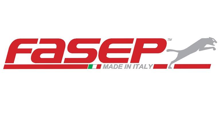 Istoria unui lider - FASEP